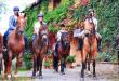 Agriturismo Rendola Riding (Tuscany, Italy)
