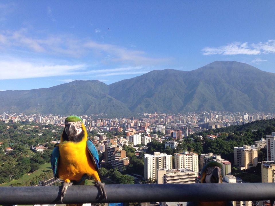 Photo of Explore Venezuela: The Land Of Grace – Venezuela Travel Information